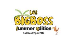 bigboss-summer-edition-2014