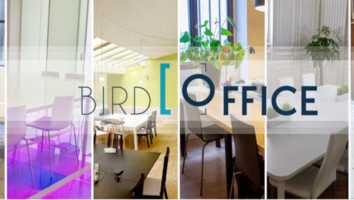 bird-office-heading1