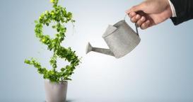 startup-investissement.jpg