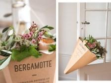 bergamotte-1